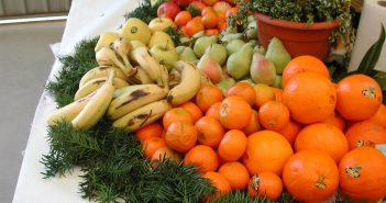 fruites web